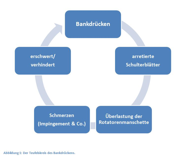 Teufelskreis Bankdrücken